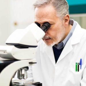Cientistas Revertem Cegueira Em Ratos: Retinose Pigmentar