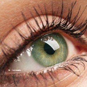 10 De Julho é O Dia Da Saúde Ocular