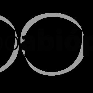 Abióptica Oferece Subsídio De 50% No Transporte De Lojistas Para Expo Abióptica 2018